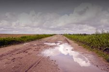 Free Countryside Road After Rain Royalty Free Stock Images - 20965669