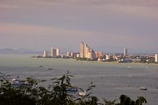 Free The Bird Eye View Of Pattaya City Stock Photo - 20966670