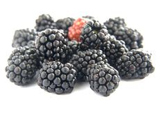 Free Blackberries Royalty Free Stock Images - 20966719