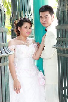 Free Wedding Suit Of Couple Royalty Free Stock Images - 20967029
