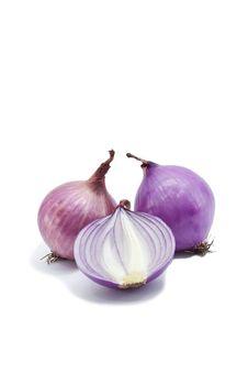Free Onion Royalty Free Stock Photo - 20967895