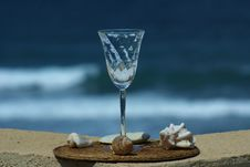 Free Wine Glass And Sea Shells Stock Photography - 20969662