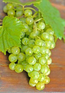 Free Grapes Royalty Free Stock Image - 20969716