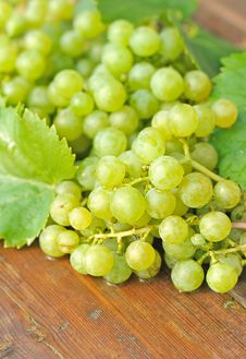 Free Grapes Royalty Free Stock Images - 20969739