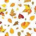 Free Autumn Seamless Pattern Royalty Free Stock Photos - 20979658