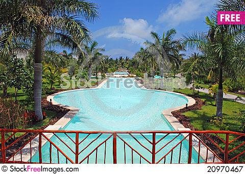 Free Tropical Garden Royalty Free Stock Photography - 20970467