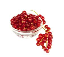 Bowl With Red Currant, Isolated Stock Photo