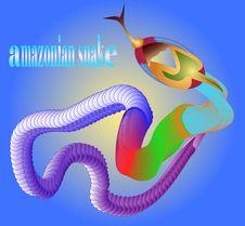 Free Amazonian Snake Royalty Free Stock Images - 20970609