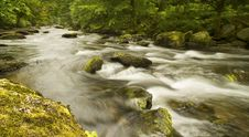 Free Rapid River Stock Images - 20970754