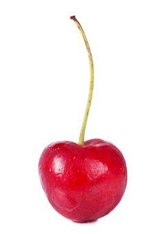 Free Cherry Stock Photography - 20971372