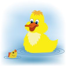 Free Duckling And A Fish Stock Image - 20972171