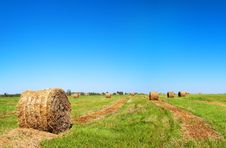 Free Bale Of Straw On Field Stock Image - 20972191