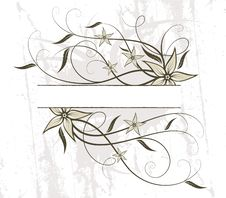 Free Floral Design. Vector Illustration Royalty Free Stock Images - 20975889