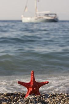 Starfish With Boat Royalty Free Stock Photography