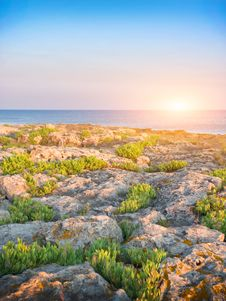 Stones Into The Sea Royalty Free Stock Photo
