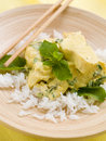 Free Curry Stock Photo - 20983940