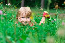 Beautiful Girl In The Meadow Stock Photos