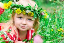 Beautiful Girl In The Meadow Royalty Free Stock Photography
