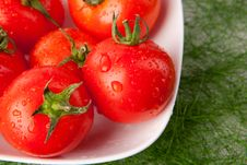 Free Wet Tomatoes In A Bowl Stock Images - 20982124