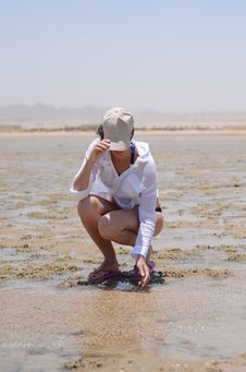 Free Woman In Cap Sitting On A Beach Royalty Free Stock Image - 20984286