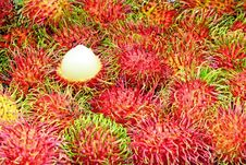Free Tropical Fruit,Rambutan. Stock Photos - 20984613