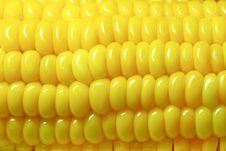 Free Corn Close Up Stock Photography - 20984932