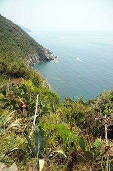 Free Cinque Terre Coastal Path ITALY Royalty Free Stock Images - 20985019