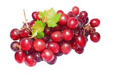 Free Red Grapes Royalty Free Stock Images - 20985269