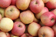 Free Apples Royalty Free Stock Photo - 20986405