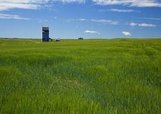 Free Wheat Field And Grain Elevator Stock Photos - 20986443