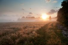 Free Fresh Atmosphere Of The Sunrise Stock Images - 20987484