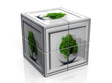 Free Tree And Cube Royalty Free Stock Image - 20988686