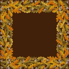 Free Oak Stock Image - 20988971