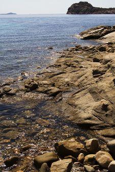 Free Sardina Sea Royalty Free Stock Photos - 20989248