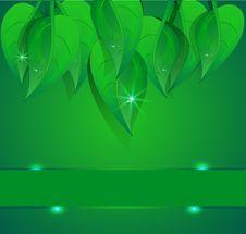 Free Background Green Banner Petal Stock Image - 20991601
