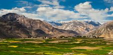 Free Nubra Valley-2/2011 Royalty Free Stock Photography - 20991617
