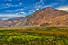 Free Nubra Valley-5/2011 Royalty Free Stock Photo - 20991695