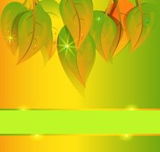 Free Vector Autumn Background Stock Photography - 20991992