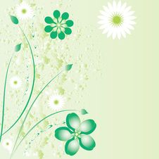 Free Beautiful Floral Background Stock Photos - 20992553