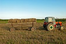 Free Baling Hay In Filed Stock Photo - 20995410