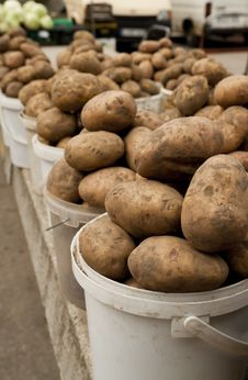 Free Potato Stock Image - 20996201
