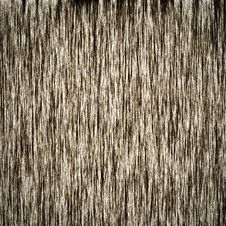 Free Wood Texture Royalty Free Stock Photo - 20997615