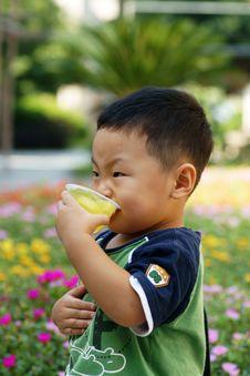 Free Little Boy Stock Photos - 20997683