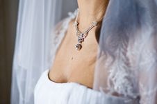 Free Adornment On Neck Of Young Bride Royalty Free Stock Images - 20997689