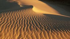 Free Lost In Desert Stock Image - 20997831