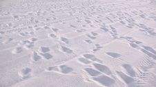 Free Footprints On White Sand Beach Royalty Free Stock Photography - 20997837