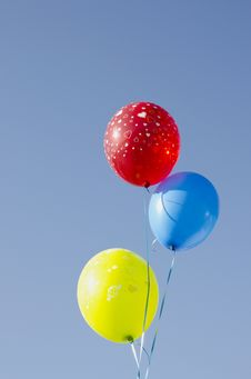 Free Multicolor Balloons Tied With Strings. Stock Images - 20998664