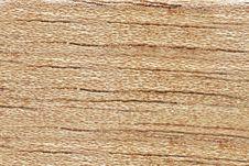 Free Cedar Background Stock Photos - 20998823