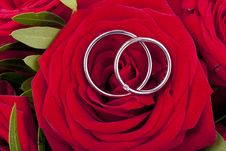 Free Wedding Rings Stock Images - 20998834