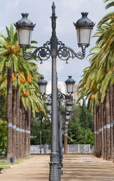 Free Lampposts Royalty Free Stock Image - 20998956